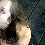 First pic of Sexually Broken | Inescapable Bondage, Brutal Bondage Sex, Devestating Orgasms | Sexually Broken Triple Threat