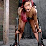 First pic of Sexually Broken | Inescapable Bondage, Brutal Bondage Sex, Devestating Orgasms | We Welcome Skin Diamond Back