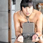 First pic of Sexually Broken | Inescapable Bondage, Brutal Bondage Sex, Devestating Orgasms | Mia Li Gets Bred By Two Cocks