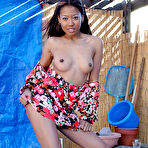 Second pic of Lily Thai - Lily Thai takes her summer dress off and gets her Asian fanny banged hard and fast.