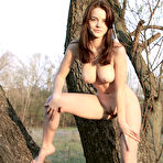 Second pic of Fascinating busty teen peach undressing and spreading her long slender legs on the logs.