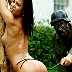 First pic of Whipped outdoor on pillory