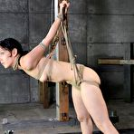 Second pic of SexPreviews - Elise Graves is bound in rope in dungeon and drooling
