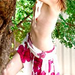 Second pic of Jacey from abbywinters.com - Flat-chested teen cutie climbing a tree at Brdteengal