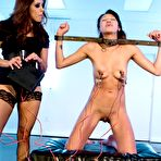 Third pic of Francesca Le tortures a restrained Jayden Lee with a cattle prod