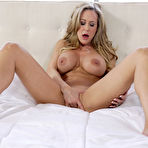 Fourth pic of Brandi Love What A View Anilos - FoxHQ