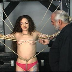 Bound and Lashed  #544789